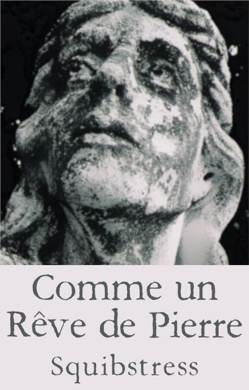 Book cover: Comme un Reve de Pierre